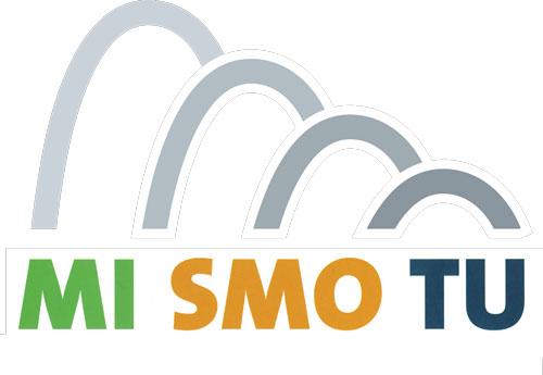 logo_mismotu